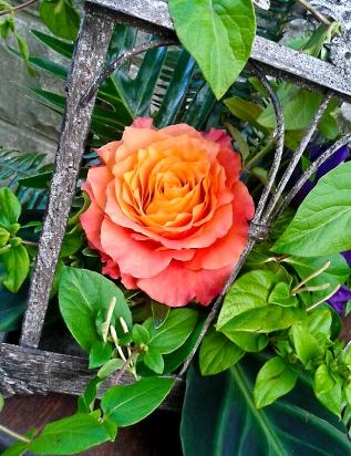 Centerpiece by Mobtown Florals